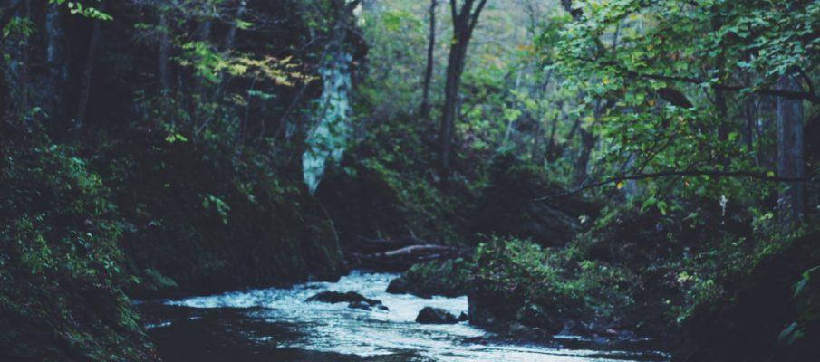 vickery-creek